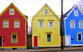 Adding Interest To Your Yard with Splashes of Color