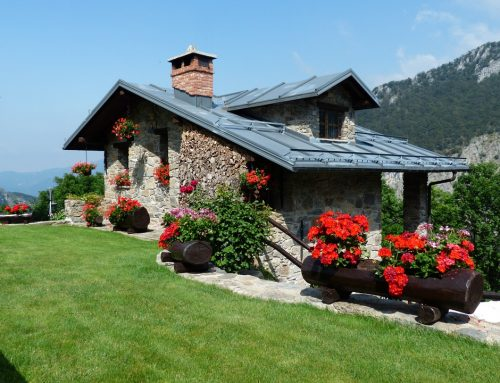 Ways Paint can Improve Your Curb Appeal